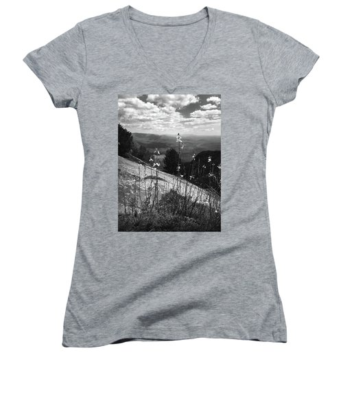 Flowers At The Top Of Table Rock Trail Women's V-Neck T-Shirt (Junior Cut) by Kelly Hazel