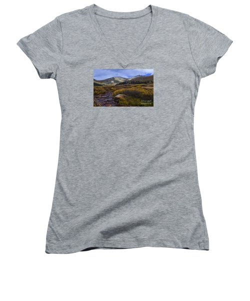 Flowing From Bierstadt Women's V-Neck (Athletic Fit)