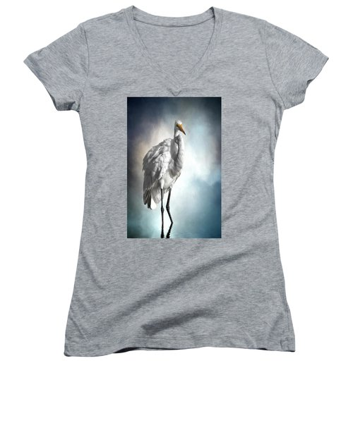 Fluffed And Plumped Women's V-Neck T-Shirt