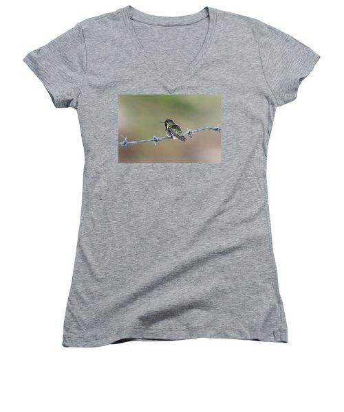 Fluffy Hummingbird Women's V-Neck