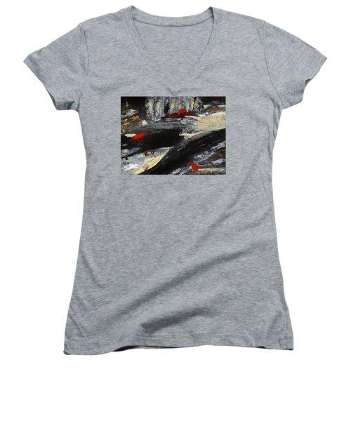 Flume 2 Women's V-Neck T-Shirt (Junior Cut) by Dick Bourgault