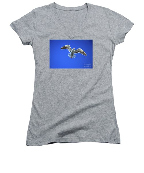 Flying Gull Women's V-Neck T-Shirt (Junior Cut) by Robert Bales