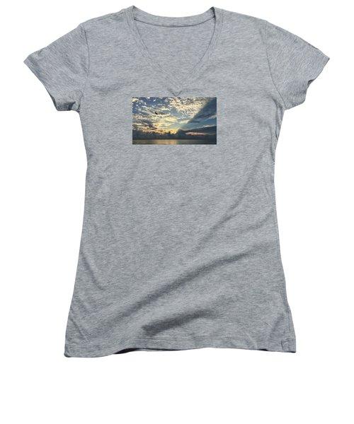 Flying To The Left Women's V-Neck T-Shirt