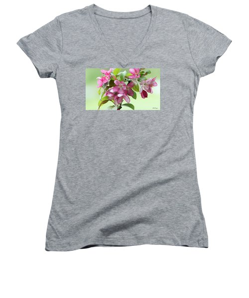 For The Beauty Of The Earth Women's V-Neck T-Shirt (Junior Cut) by Skip Tribby