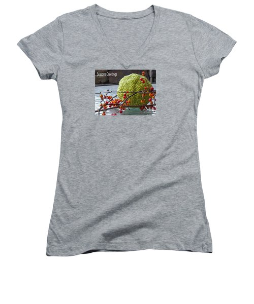 Women's V-Neck T-Shirt (Junior Cut) featuring the photograph For The Birds by Lyric Lucas