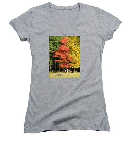 Forest Door Women's V-Neck T-Shirt