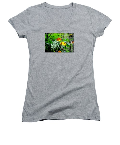 Women's V-Neck T-Shirt (Junior Cut) featuring the photograph Forest Little Wonders by Tanya Searcy