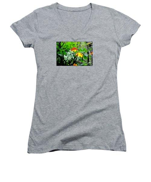 Forest Little Wonders Women's V-Neck T-Shirt