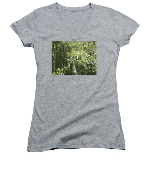 Forest On A Swamp Women's V-Neck T-Shirt
