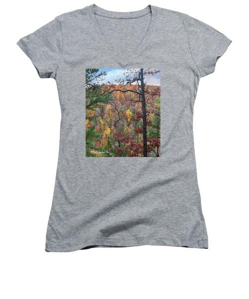 Forest Women's V-Neck T-Shirt (Junior Cut) by Tim Fitzharris