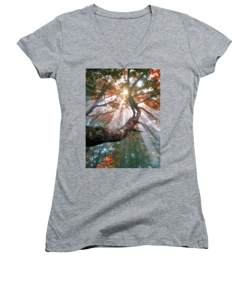 Forest With Fog And Sun Rays Women's V-Neck