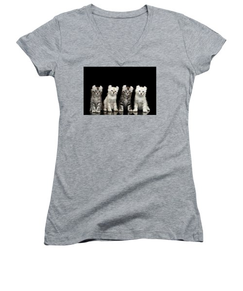 Four American Curl Kittens With Twisted Ears Isolated Black Background Women's V-Neck T-Shirt (Junior Cut) by Sergey Taran
