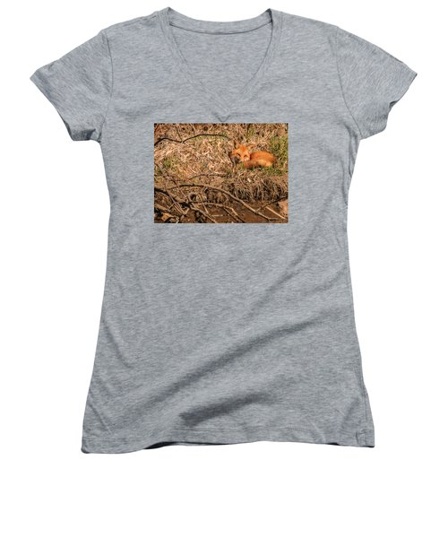 Fox  Women's V-Neck T-Shirt (Junior Cut) by Edward Peterson