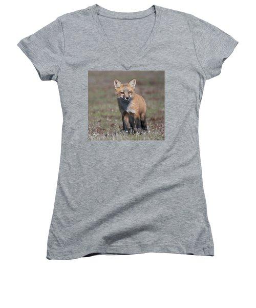 Fox Kit Women's V-Neck T-Shirt
