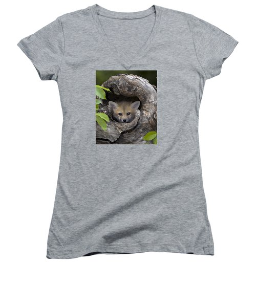 Fox Kit In Log Women's V-Neck (Athletic Fit)