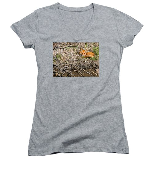 Fox Napping Women's V-Neck T-Shirt (Junior Cut) by Edward Peterson