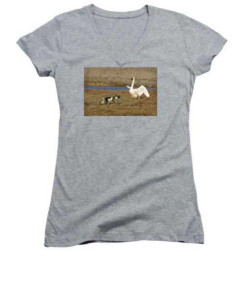 Fox Vs Swan Women's V-Neck T-Shirt (Junior Cut) by Anthony Jones