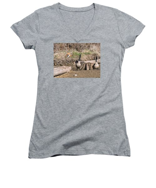 Fox Watch Women's V-Neck T-Shirt (Junior Cut) by Edward Peterson