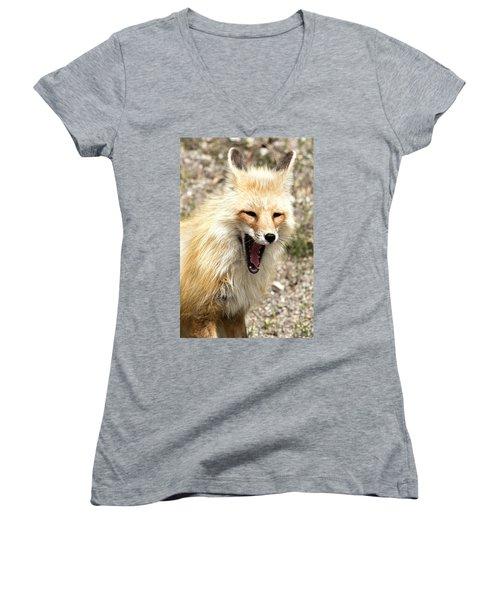 Fox Yawn Women's V-Neck