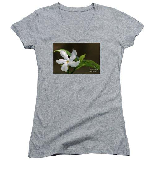 Frangipani Curves Women's V-Neck T-Shirt
