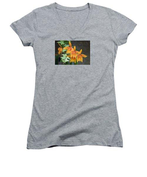 Freckled Flora Women's V-Neck T-Shirt