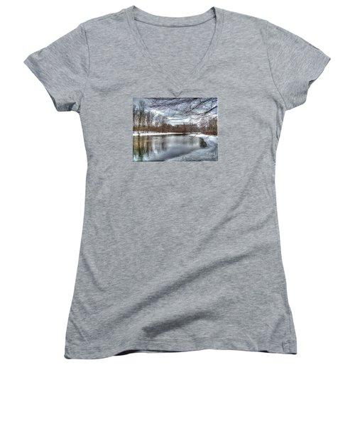 Freezing Up Women's V-Neck T-Shirt (Junior Cut) by Betsy Zimmerli