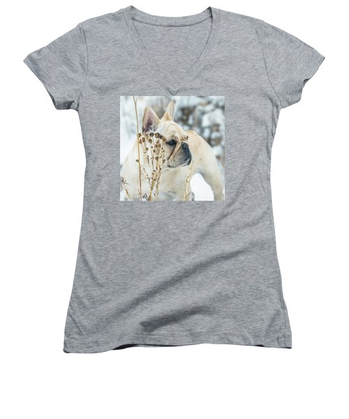 French Bulldog In The Snow Women's V-Neck