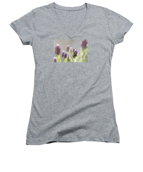 French Lavendar Buds Women's V-Neck T-Shirt (Junior Cut) by Mary Angelini