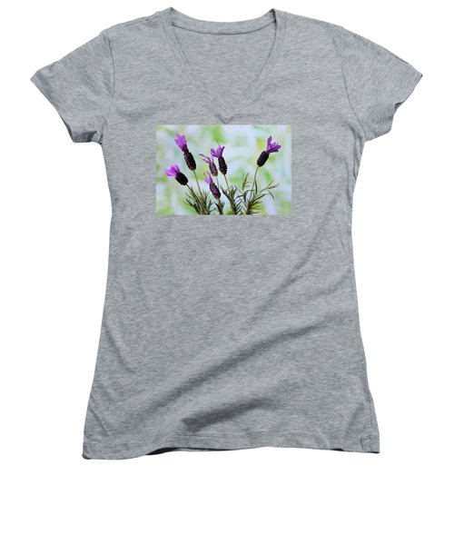Women's V-Neck T-Shirt (Junior Cut) featuring the photograph French Lavender by Terence Davis
