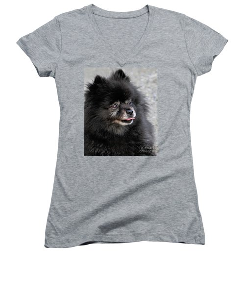 Women's V-Neck T-Shirt featuring the photograph Fresh Dog by Debbie Stahre