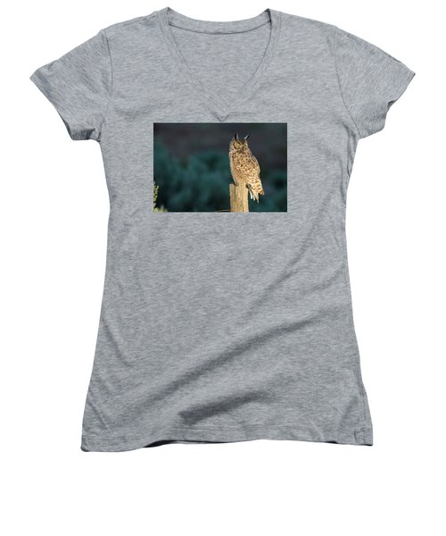 From Dusk Til Dawn Women's V-Neck T-Shirt (Junior Cut) by Scott Warner