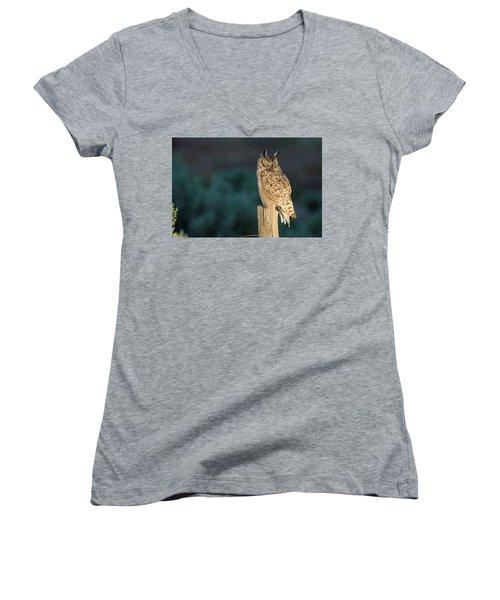 From Dusk Til Dawn Women's V-Neck T-Shirt
