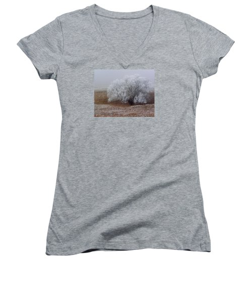 Frost And Fog Women's V-Neck T-Shirt (Junior Cut) by Alana Thrower