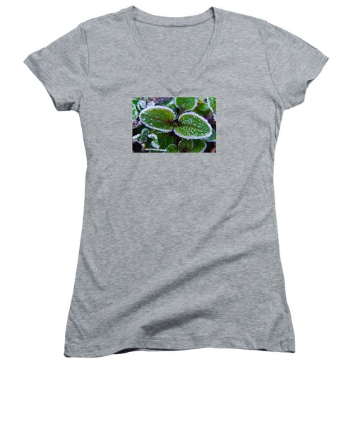 Frosted Edges Women's V-Neck T-Shirt (Junior Cut) by Adria Trail