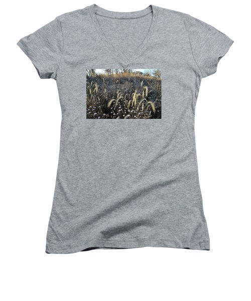 Frosted Foxtail Grasses In Glacial Park Women's V-Neck
