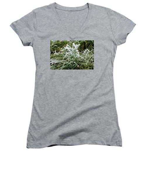 Frosted Grass Women's V-Neck T-Shirt