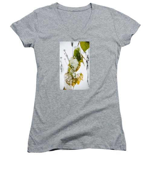 Frosted Green And Yellow Women's V-Neck T-Shirt (Junior Cut) by Deborah Smolinske