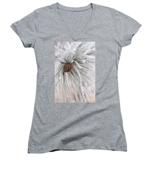 Frosty Women's V-Neck T-Shirt