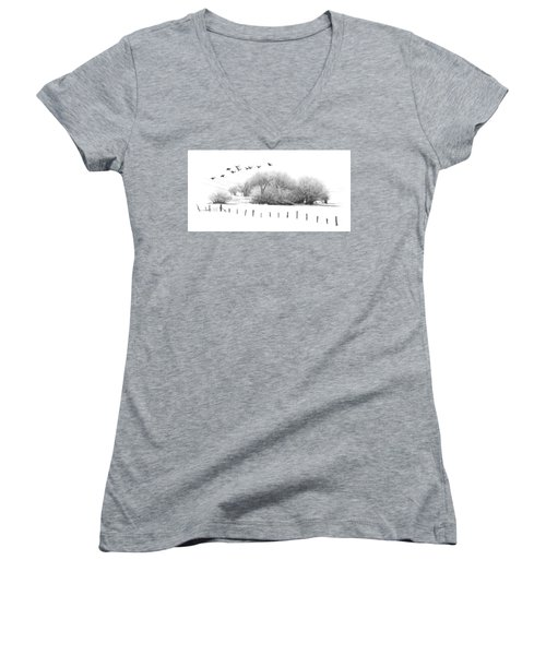 Frosty Flight Women's V-Neck T-Shirt