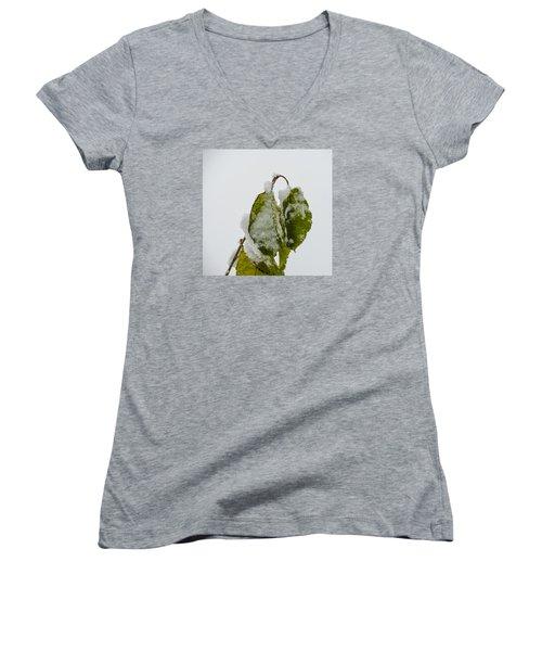 Women's V-Neck T-Shirt (Junior Cut) featuring the photograph Frosty Green Leaves by Deborah Smolinske