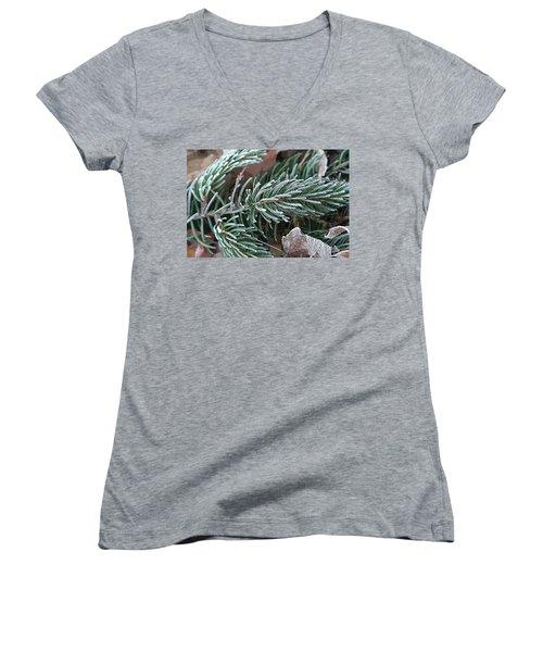 Frosty Pine Branch Women's V-Neck T-Shirt