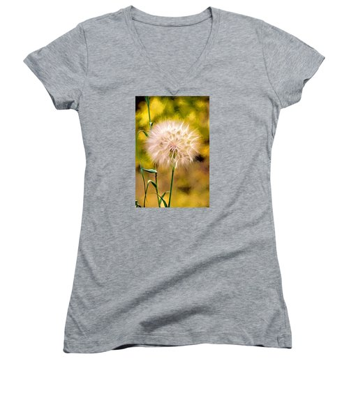 Women's V-Neck T-Shirt (Junior Cut) featuring the digital art Frozen In Time by James Steele