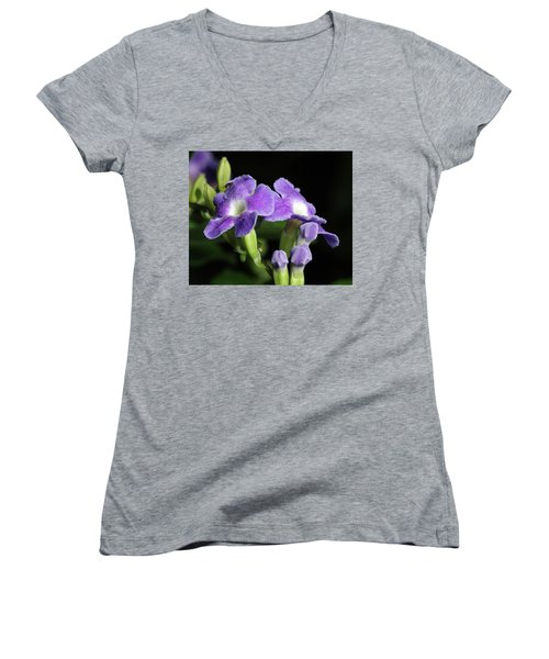 Women's V-Neck T-Shirt (Junior Cut) featuring the photograph Fruit Fly On Golden Dewdrop by Richard Rizzo