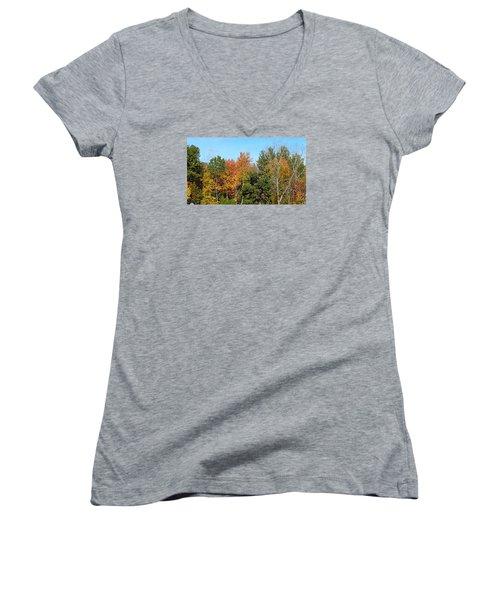 Full Fall Women's V-Neck T-Shirt (Junior Cut) by Jana E Provenzano