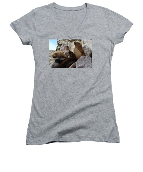 Fur Seals On The Ballestas Islands, Peru Women's V-Neck T-Shirt (Junior Cut) by Aidan Moran