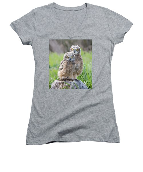 Furrballs Women's V-Neck T-Shirt