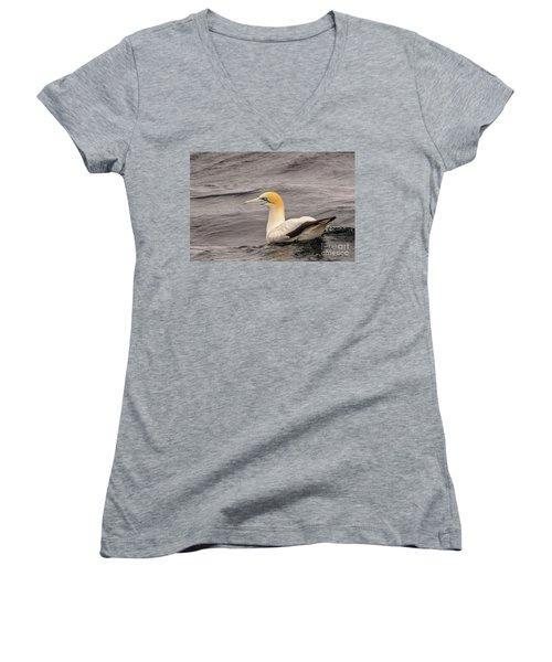 Gannet 5 Women's V-Neck T-Shirt