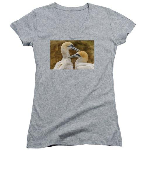 Gannets 4 Women's V-Neck T-Shirt