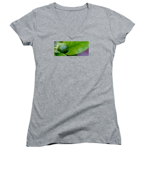 Gapefruit Women's V-Neck T-Shirt (Junior Cut) by Werner Lehmann
