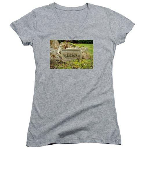 Garden Babies II Women's V-Neck T-Shirt